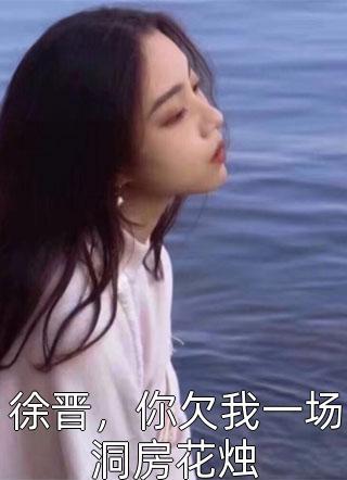徐晋,你欠我一场洞房花烛小说